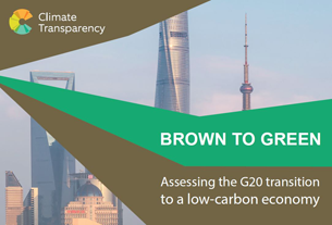 Report: Brown to Green: Assessing the G20 transition to a low-carbon economy