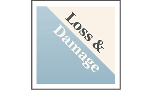Website Loss and Damage in Vulnerable Countries Initiative