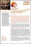 Cover CDKN Guide Warschau 2013 11