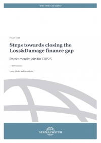 Policy Briefing: Steps towards closing the Loss&Damage finance gap