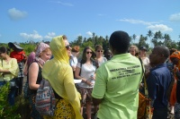 Fiel Visit to Magrove Reforestation Project in Jozani, Zanzibar